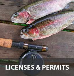 licensespermits