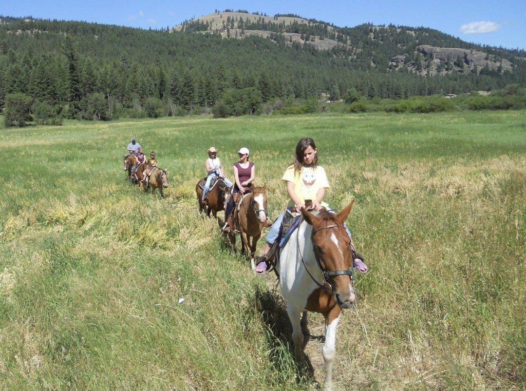K Diamond K Horseback Rides