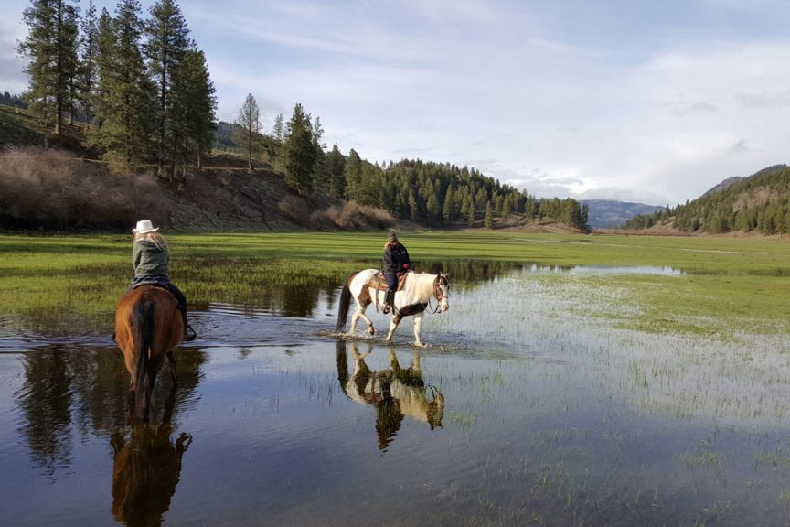 K Diamond K Guest Ranch features horseback riding